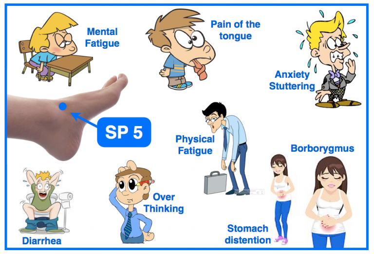 SP-5-acupuncture-point-768x522