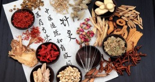 traditional-chinese-medicine-root-could-remove-scars-2z3mjx7zn5pv9k7tv3uakg
