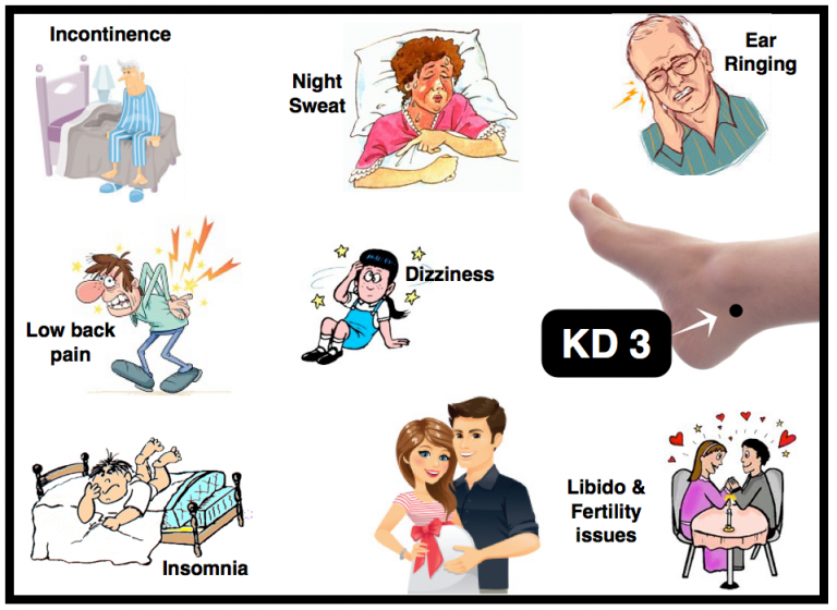 KD-3-acupuncture-point-768x560