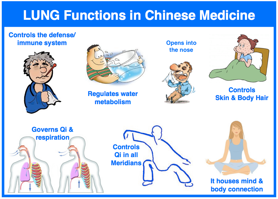 Lung-Function-in-TCM